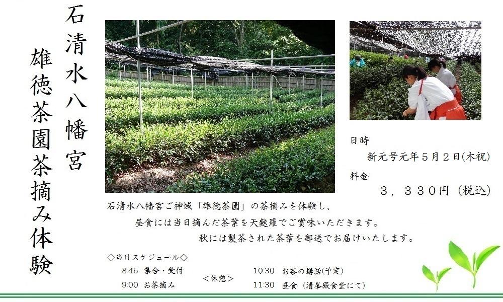 茶摘みプランR1